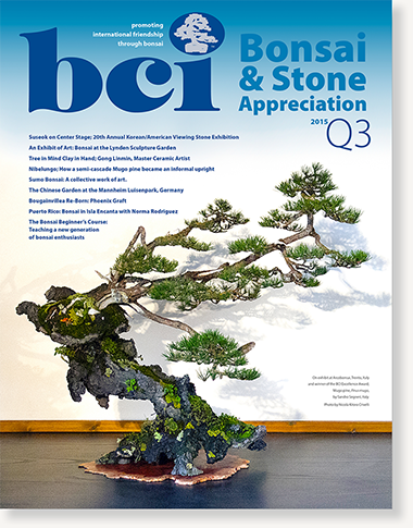 mag 2015Q3-cover-dropshadow 380