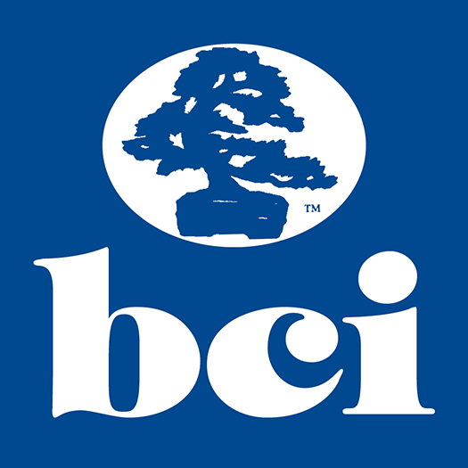 BCI-about 01