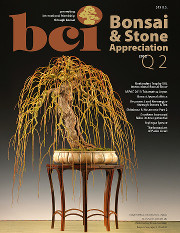 Issue 2012-Q2