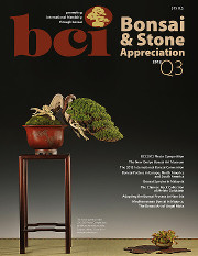 Issue 2012-Q3