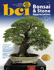 Issue 2013-Q1