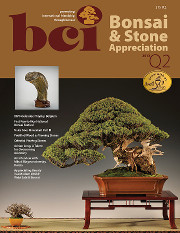 Issue 2013-Q2