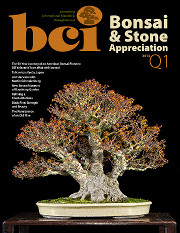 Issue 2014-Q1