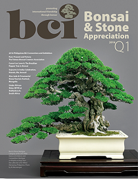 mag 2016Q1-cover-dropshadow-380 small
