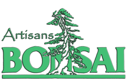 Artisans Bonsai