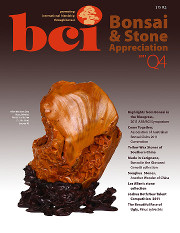 Issue 2011-Q4