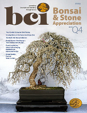 Issue 2013-Q4