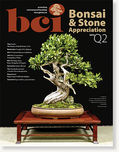 mag 2015Q2 cover dropshadow 02