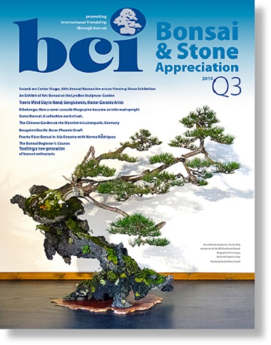 mag 2015Q3 cover dropshadow fr page
