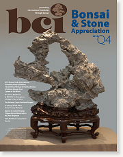 Issue 2015-Q4