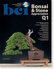 Issue 2017-Q1