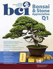 Issue 2018-Q1