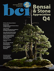 Issue 2017-Q4