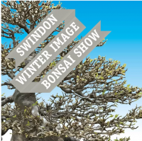 Swindon Winter Image Show
